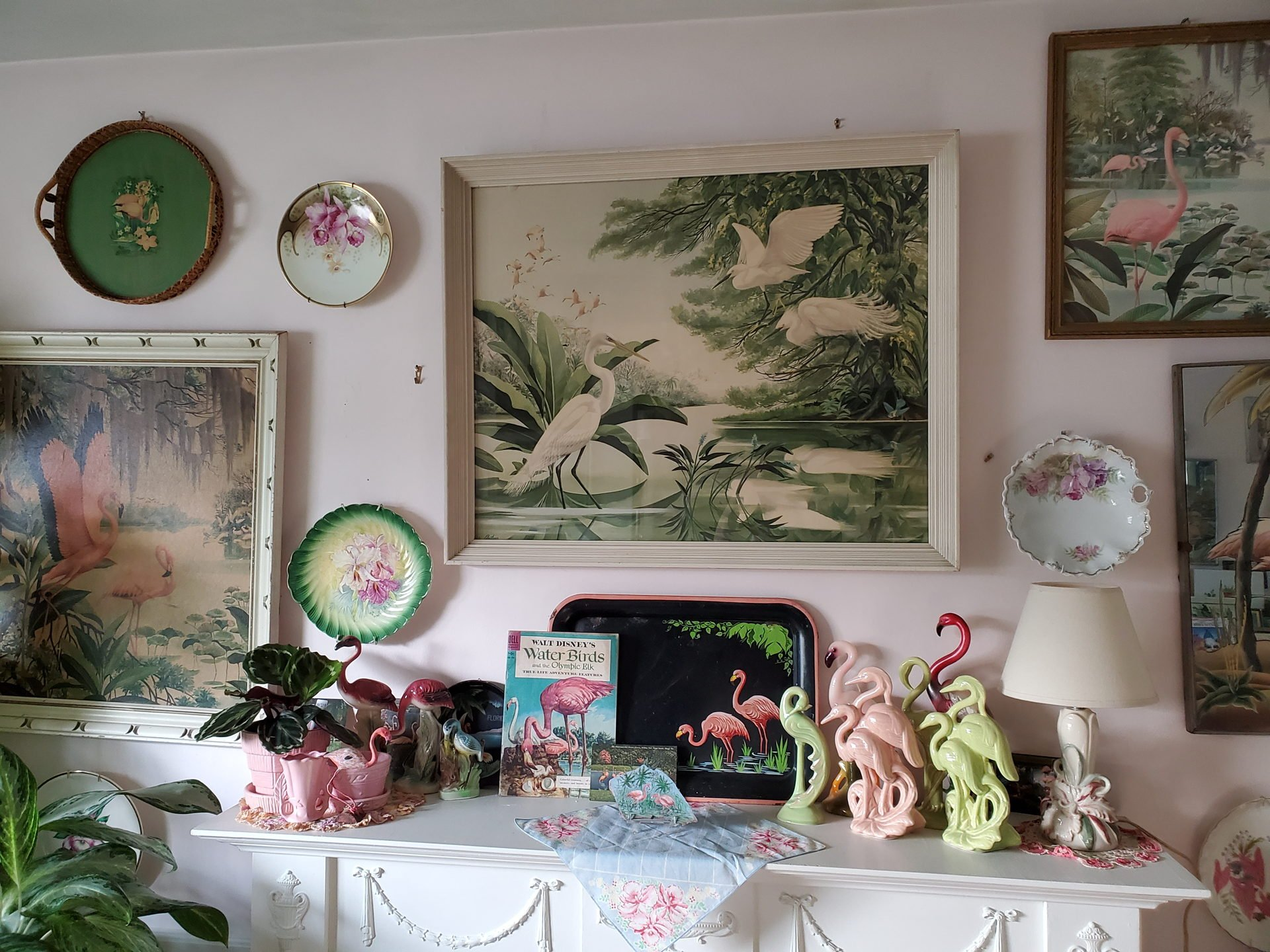 Collection of flamingos