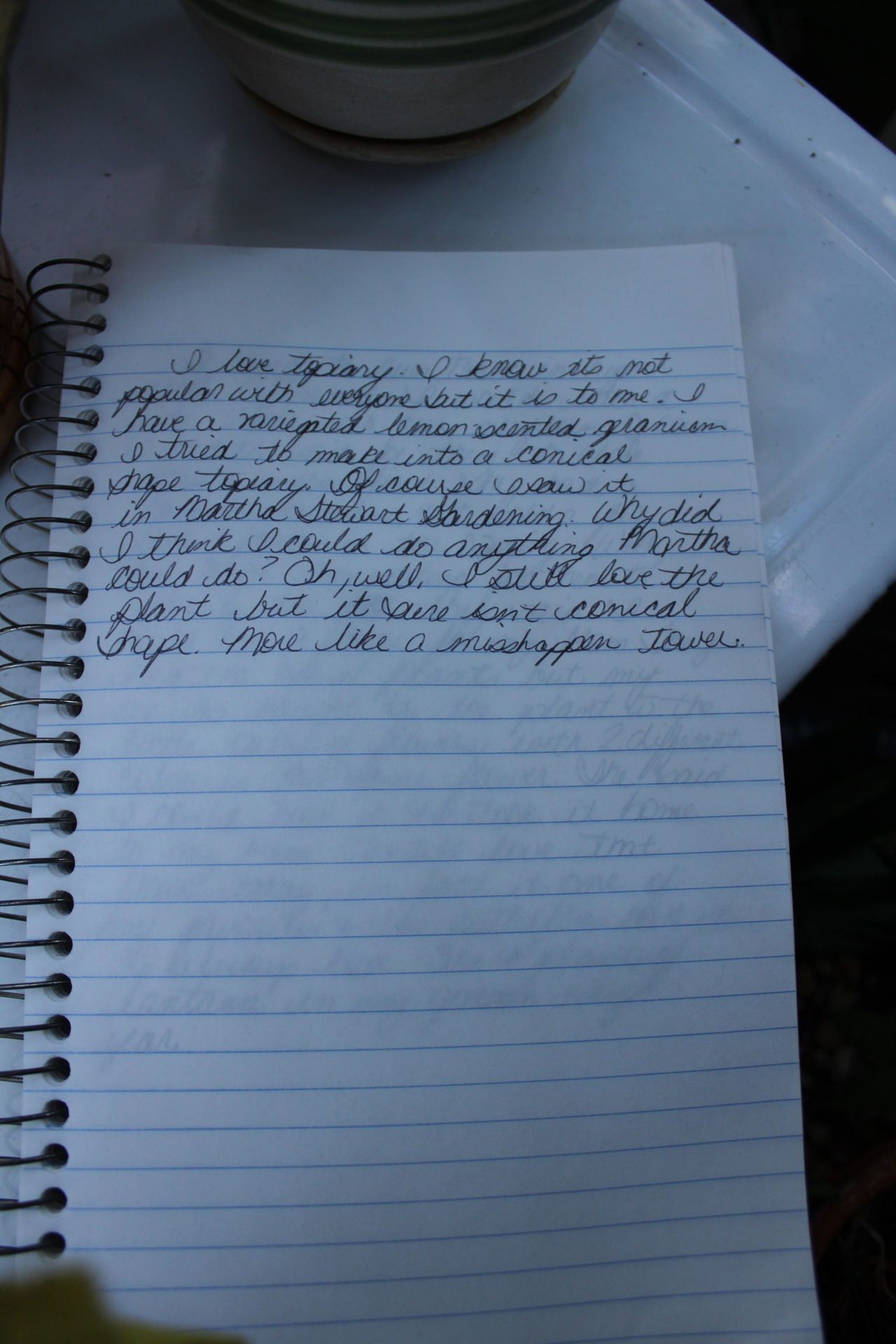 Notebook with writing