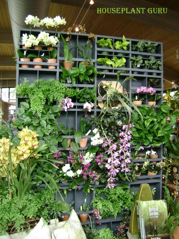 New York Botanical Garden gift shop