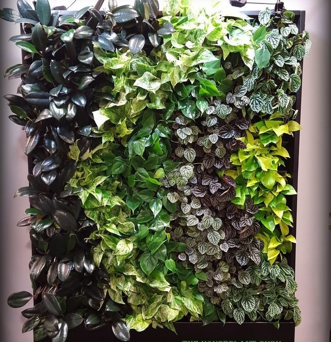 Gardening On The Wall: A Continuing Trend
