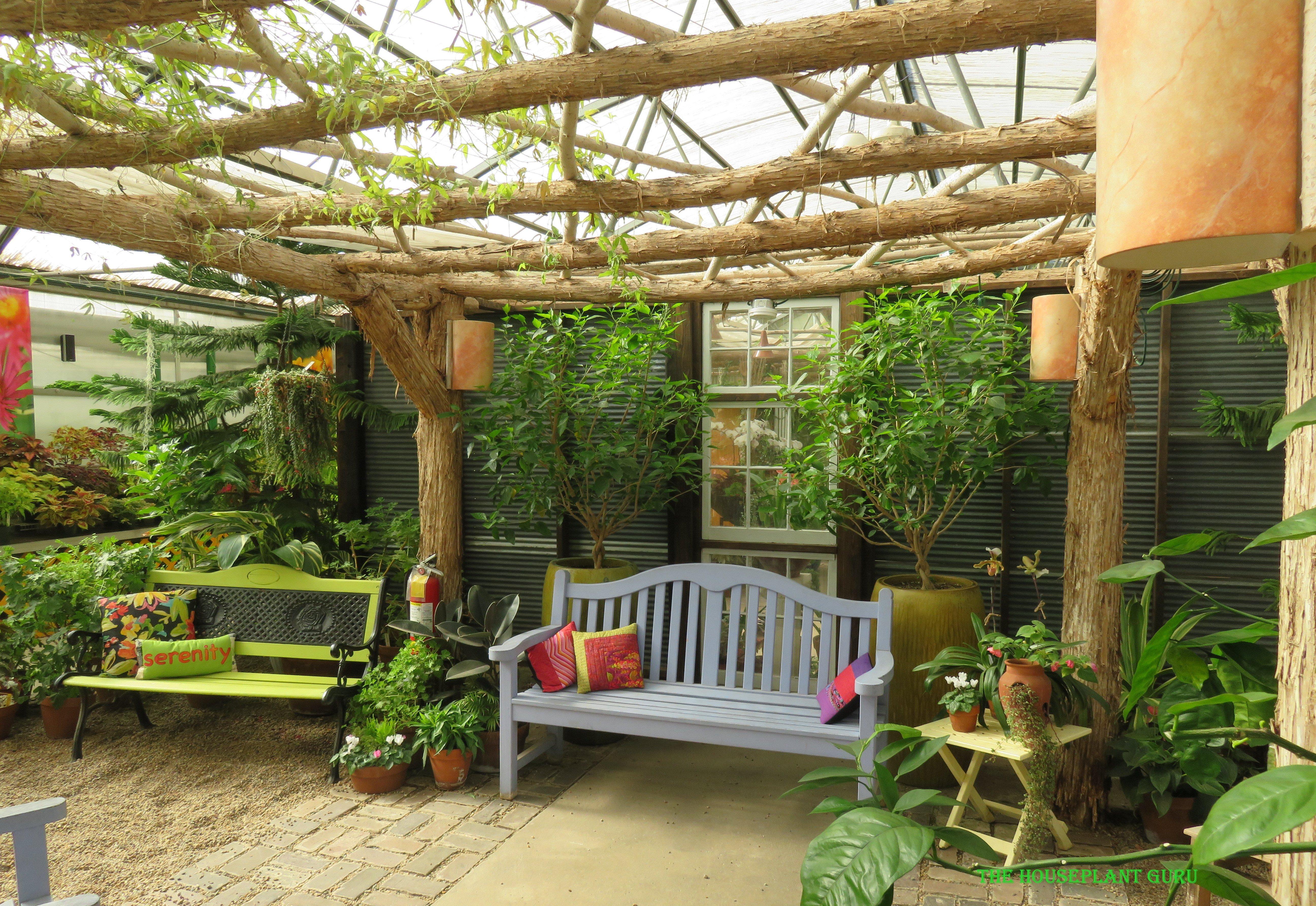 The Gardener S Show House The Houseplant Guru