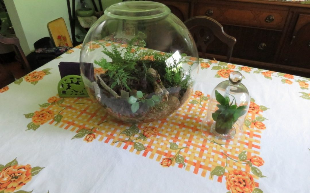 My Planty Table