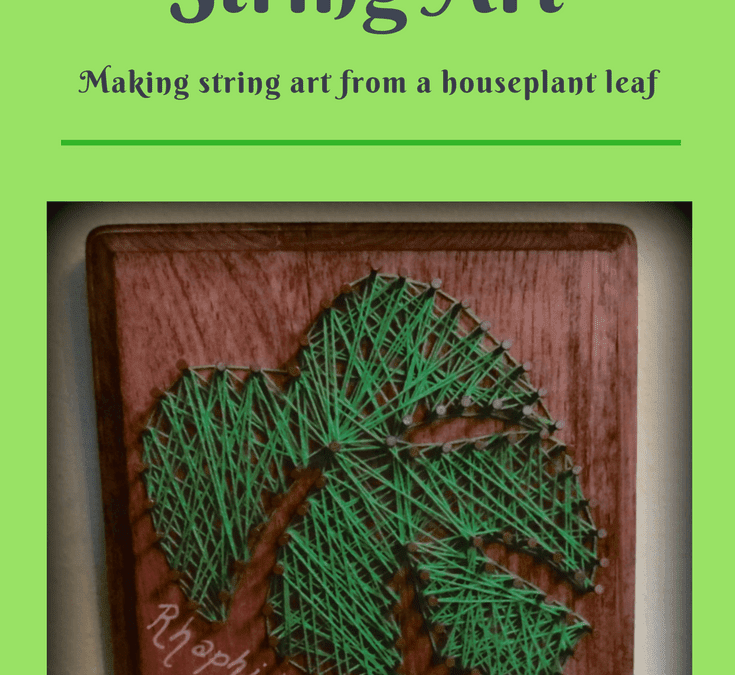 Houseplant String Art