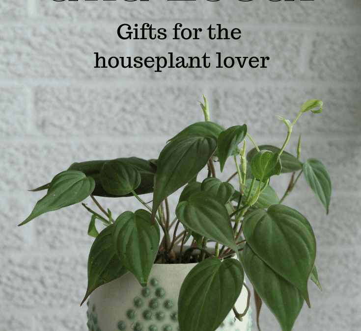 Handmade and Local Gifts for the Houseplant Lover