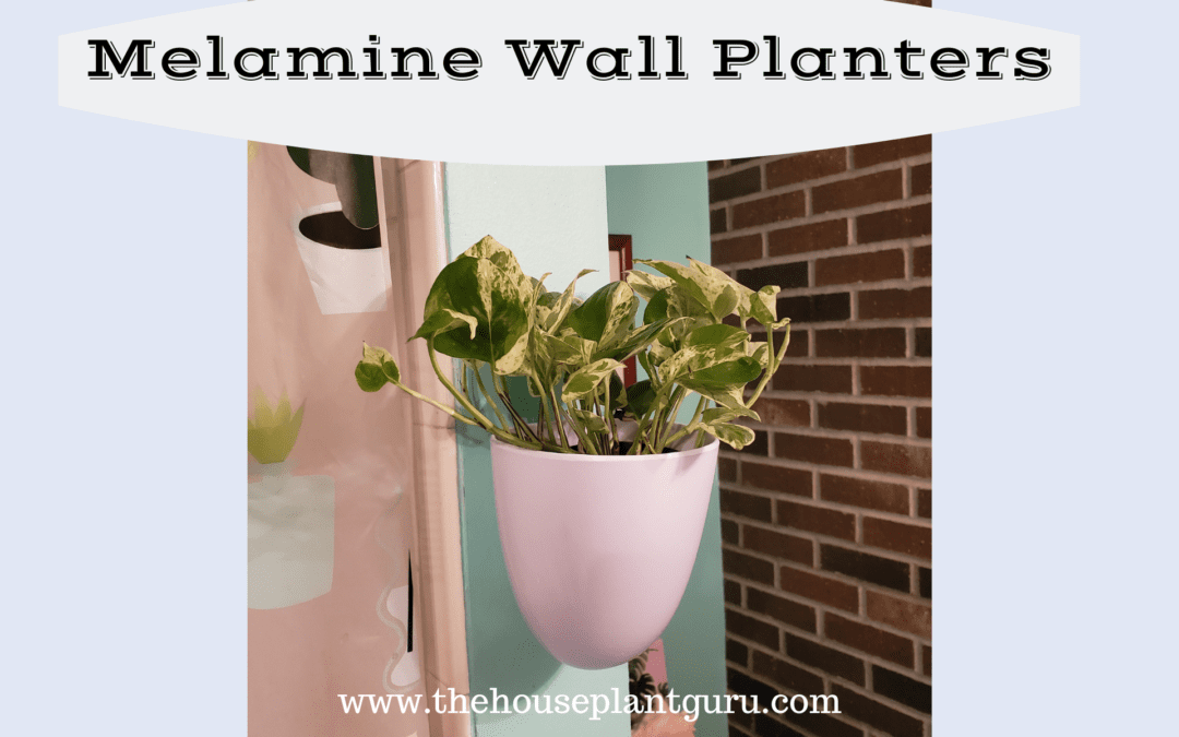 Melamine Wall Planters Product Review
