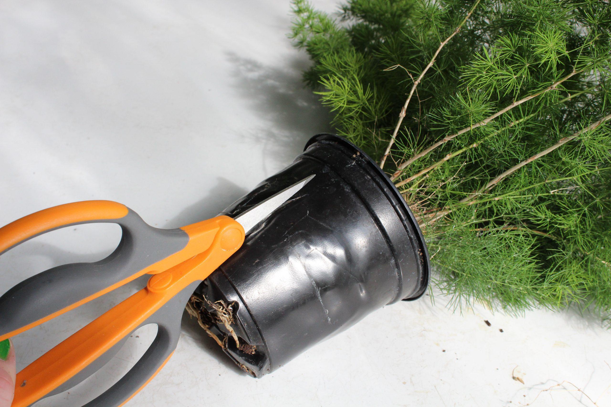 cutting a pot off