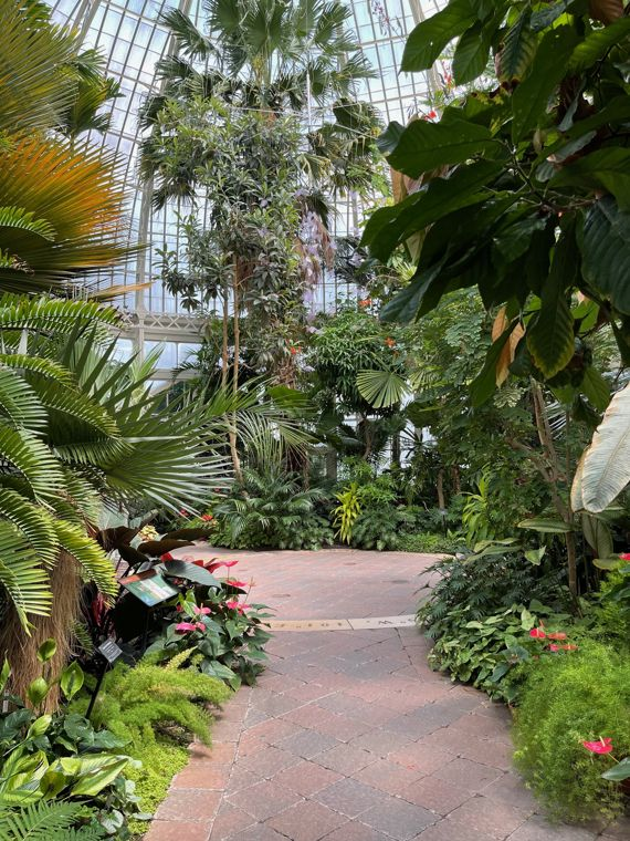 Buffalo and Erie Gardens conservatory