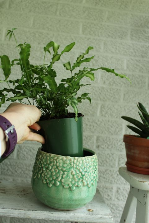 cachepot for houseplants